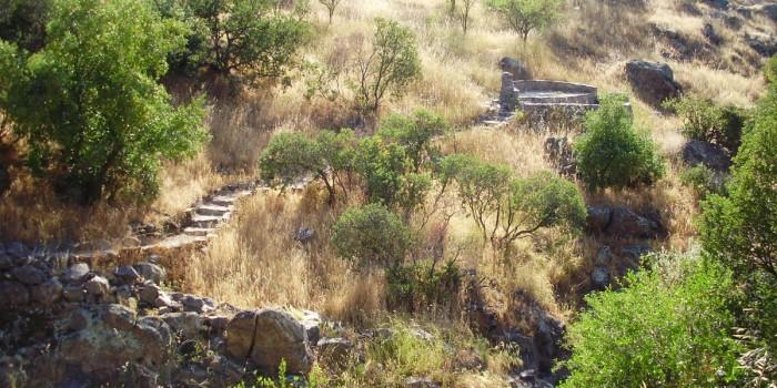 2008 | Estero Carrizo o Pircas Viejas